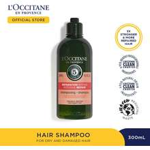 L'OCCITANE 5 Essential Oils Intensive Repair Shampoo [300 Ml] - Aromachologie
