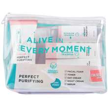 Mineral Botanica Acne Care Perfect Purifying Series Set